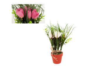 Wholesale: Flowers in round pot asst