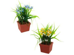Wholesale: Flowers in sqr pot asst