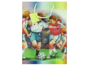 Wholesale: Large Sports Themed Gift Bag