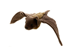 Mexican Free-tail Bat Plush Toy