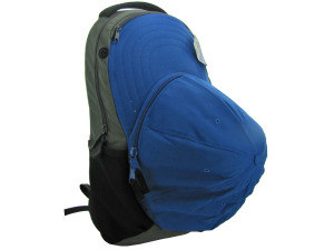 Dlx royal blue backpack