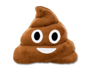 Emoticon Poop Face Plush Pillow