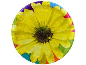 """Wholesale: 8pk 8.75"""" daisy plates"""