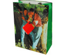 medium gift bag 10050