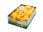 Rubber Ducks Party Favors Countertop Display