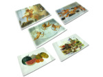 Plastic placemats, assorted designs