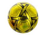 Size 5 Metallic Gold & Black Soccer Ball