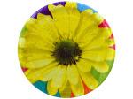 """8pk 8.75"""" daisy plates"""