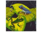 18ct fun frogs napkins