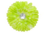 6 pack lime green fabric daisy with jewel